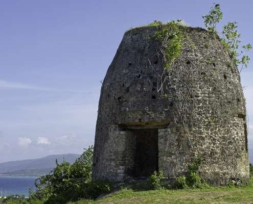 Green Castle Estate tour Jamaica.