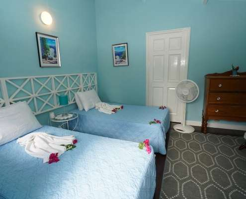 Vireo - Twin rustic Cottage rooms at Green Castle Hotel Jamaica