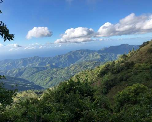 downhill biking guided tour in blue mountains jamaica